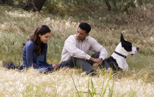 SevenPounds-Meadow.jpg