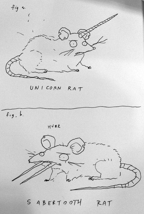 Rats-WEB